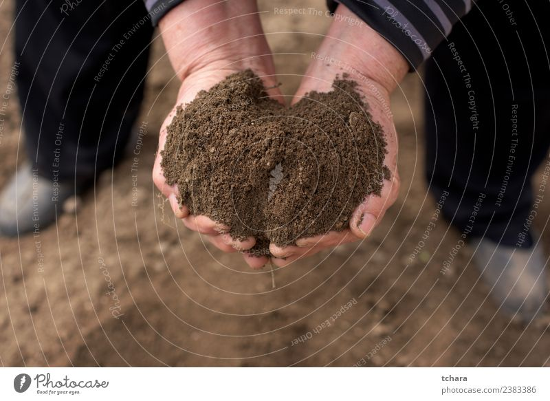 Save the Nature Garden Work and employment Gardening Human being Woman Adults Man Hand Fingers Environment Earth Sand Growth Dirty Wet Natural Brown Black land