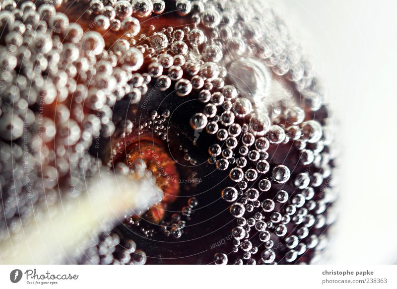 cherry Fruit Beverage Cold drink Spirits Sparkling wine Prosecco Water Delicious Round Juicy Sweet Colour photo Subdued colour Underwater photo Deserted