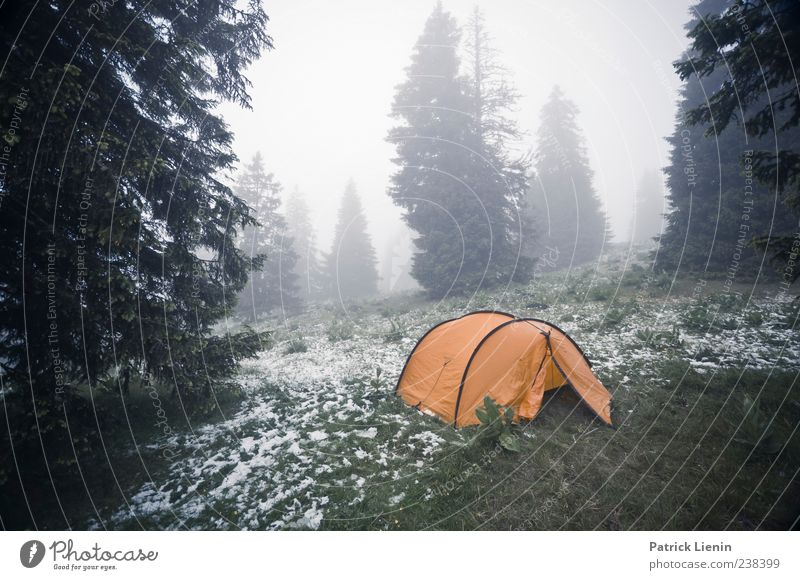 Step outside in the morning Vacation & Travel Camping Mountain Environment Nature Landscape Plant Elements Clouds Climate Weather Bad weather Storm Fog Snow