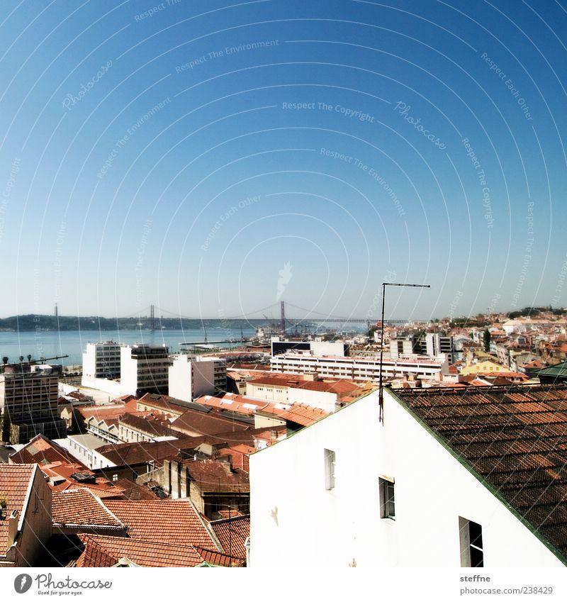 Diagonal, indicated Cloudless sky Summer Beautiful weather Lisbon Portugal Capital city House (Residential Structure) Wall (barrier) Wall (building) Facade