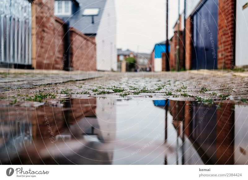 puddle Calm Vacation & Travel Trip Sightseeing City trip Gate Water Grass Puddle Surface of water Oxford England Town Downtown Old town Deserted