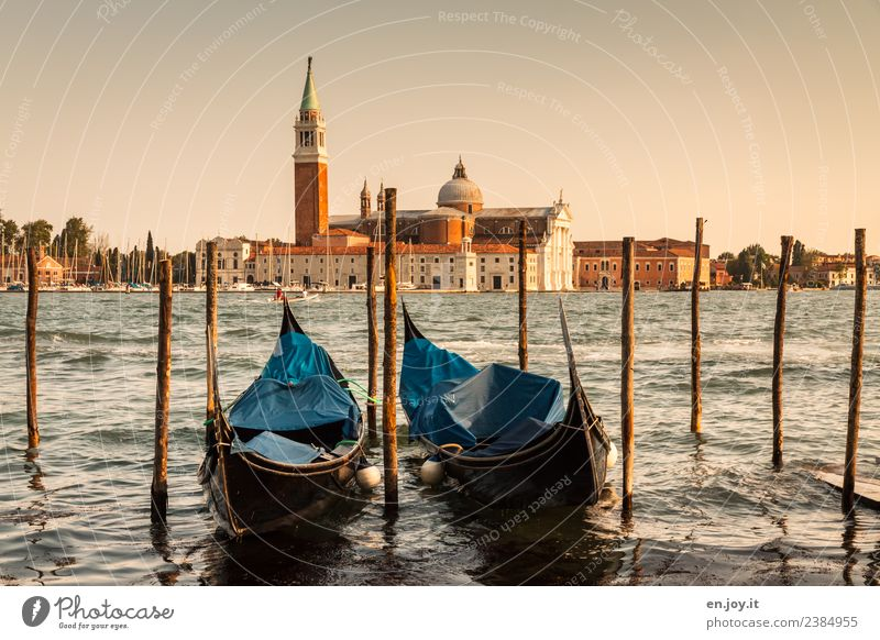 gondola around Vacation & Travel Tourism Trip City trip Summer Summer vacation Ocean Venice Italy Town Port City Old town Church Building Tourist Attraction