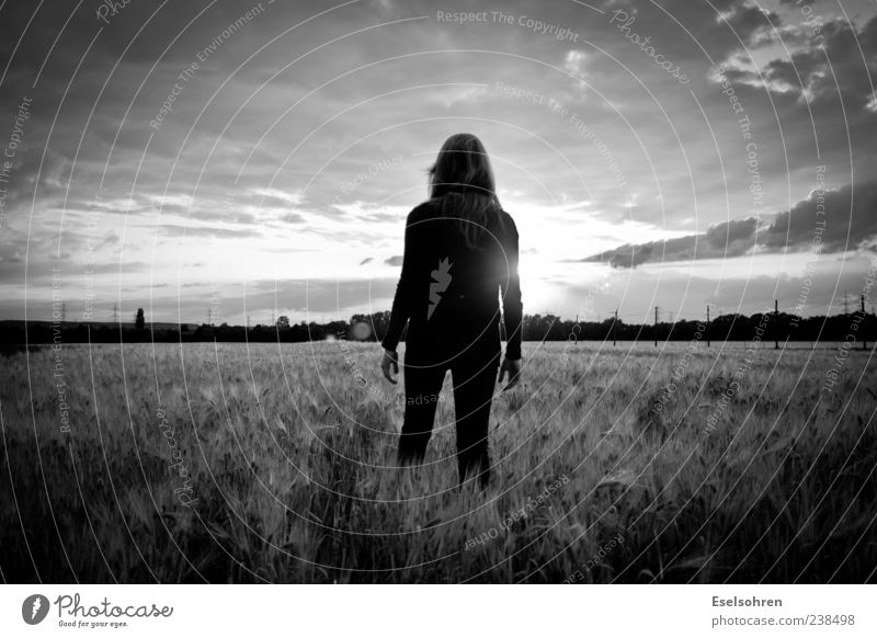 Half Remembered Dream Freedom Sun Human being Feminine Woman Adults 1 Nature Landscape Sky Sunrise Sunset Summer Beautiful weather Field Forest Touch Movement