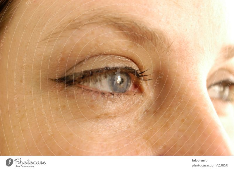 moment later Woman Eyebrow Overexposure Freckles Eyelash Make-up Think Eyes Face Iris mascara Looking