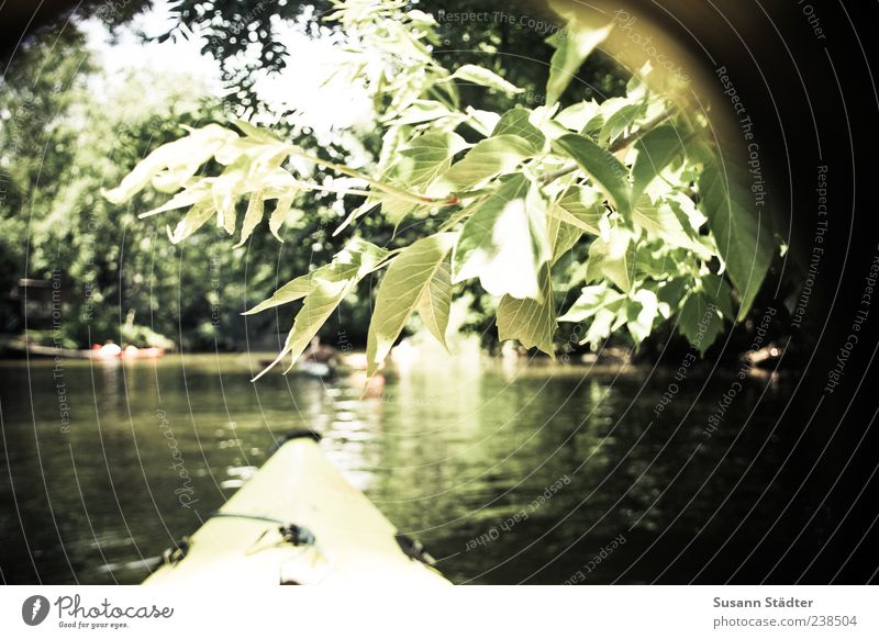 LE from the kayak Life Leisure and hobbies Vacation & Travel Expedition Summer Waves Swimming & Bathing Kayak Watercraft Leipzig Leipziger Neuseenland