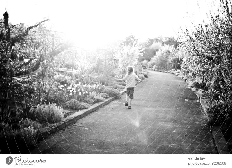 Human being Child Nature Girl Tree Plant Flower Summer Grass Spring Lanes & trails Environment Warmth Dance Walking