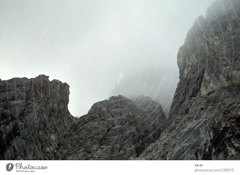 What the fog releases... Clouds Autumn Bad weather Fog Rain Rock Alps Mountain Chalk alps Karwendelgebirge Peak Dark Sharp-edged Creepy Gray Calm Loneliness