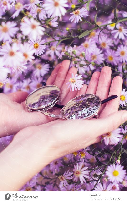 Hands holding sunglasses surrounded by flowers Nature Plant Beautiful Colour Flower Environment Spring Natural Small Fashion Pink Contentment Bright Retro