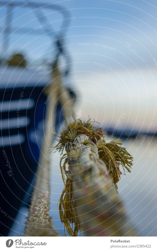 #S# Cast off Navigation Emotions Harbour Rope Drop anchor Craft (trade) Travel photography Adventure Vacation & Travel Attempt Twisted Water Lakeside Baltic Sea