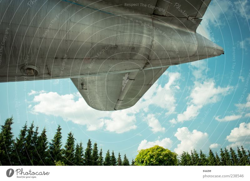 Sky Old Tree Clouds Environment Air Metal Weather Flying Airplane Aviation Retro Point Beautiful weather Nostalgia Tin