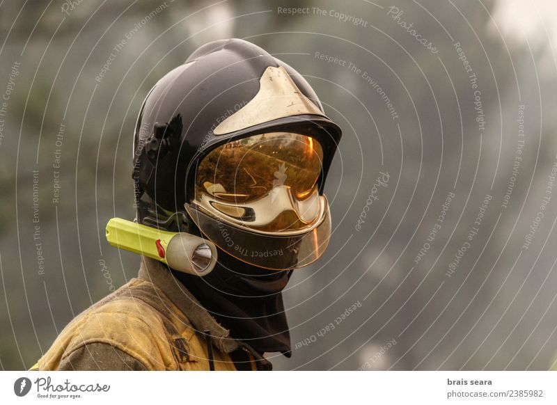 Fireman Work and employment Profession Services Environment Nature Landscape Climate change Wind Tree Forest Hot Natural Strong Wild Dangerous Disaster