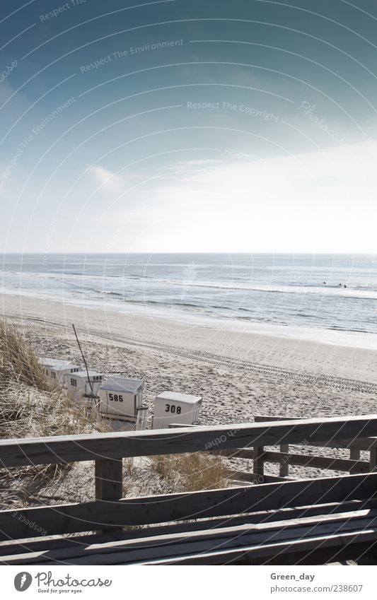 Sylt Beach Ocean Landscape Sand Beautiful weather Coast Infinity Small Contentment Beach chair Surfer Colour photo Exterior shot Light Sunlight Handrail Wood