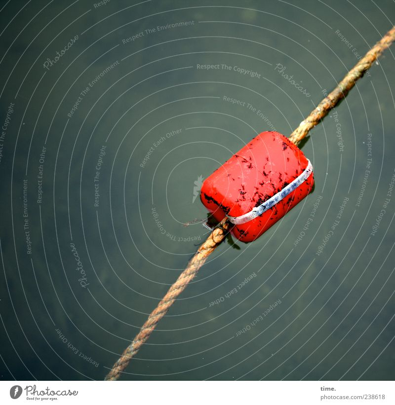Water Red Wet Dangerous Rope Threat Warning label Border Risk Float in the water Damp Barrier Clue Boundary Fishing float Warning colour