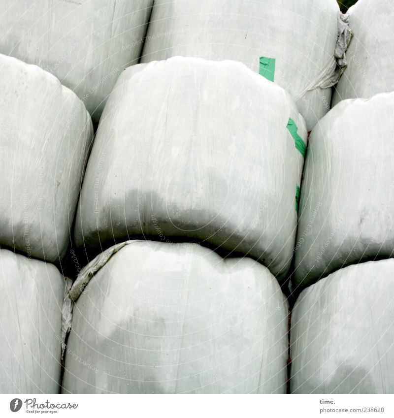 Old sacks Plastic packaging Round White silage Stack Packaged Colour photo Subdued colour Exterior shot Pattern Structures and shapes Deserted Copy Space top