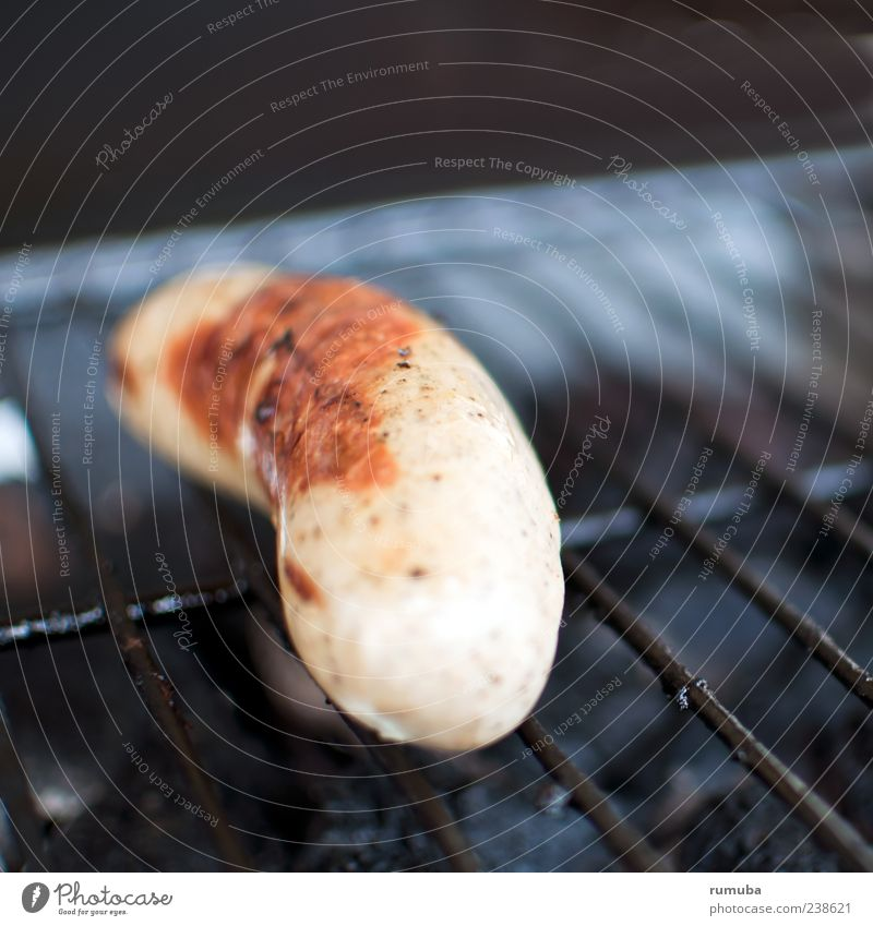 Nutrition Food Brown Lie Point Barbecue (event) Lunch Barbecue (apparatus) Sausage Bratwurst Grill Small sausage Hotdog Sausage casing