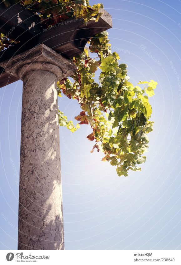 Piece of Paradise. Art Esthetic Paradisical Rome Column Garden Garden art Green Sandstone Sky Heavenly Vacation & Travel Vacation photo Vacation mood