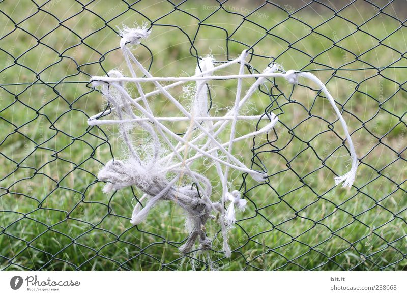 Nature Green Meadow Grass Beginning Creativity Poverty Broken Rope String Network Attachment Fence Net End Hollow