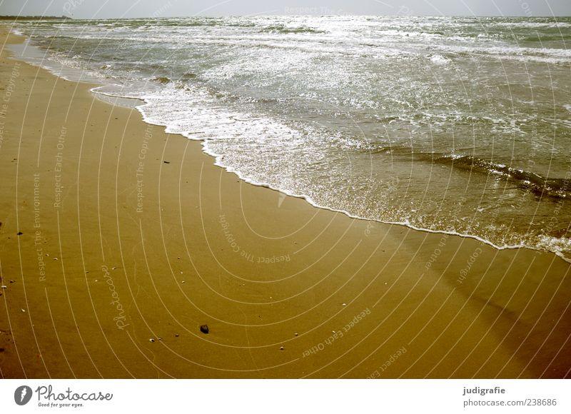 western beach Environment Nature Landscape Sand Water Sunlight Summer Waves Coast Beach Baltic Sea Darss Fantastic Infinity Wet Natural Moody Colour photo