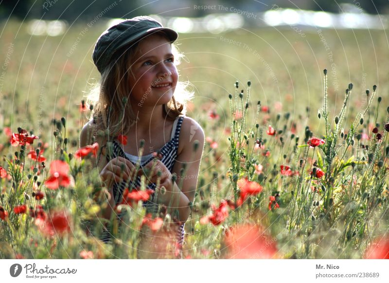 Nature Plant Summer Girl Flower Environment Landscape Meadow Grass Happy Park Contentment Blonde Infancy Field Natural