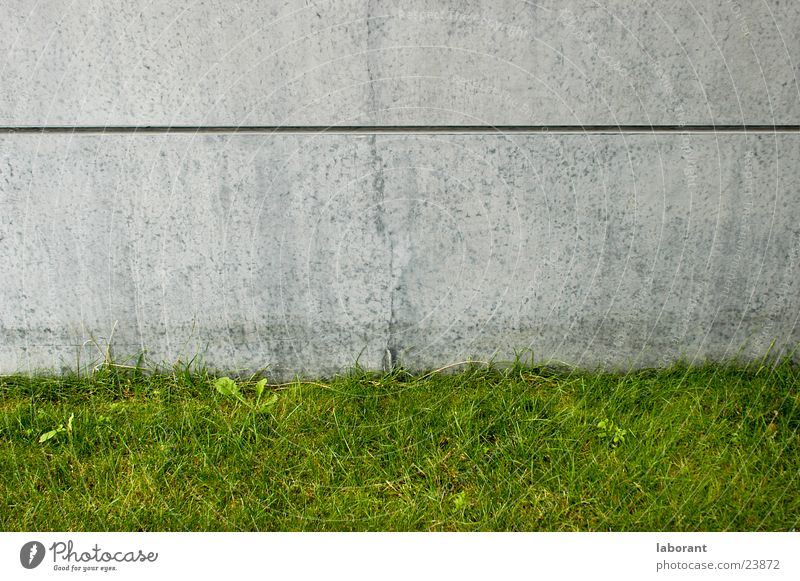 Green Meadow Wall (building) Grass Gray Wall (barrier) Building Architecture Concrete