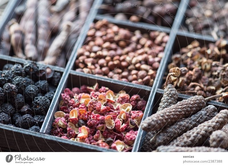 Red Black Blossom Brown Cooking Herbs and spices Tangy Organic produce Vegetarian diet Pepper Spicy Asian Food Peppercorn Colour Guide Husk Typecase