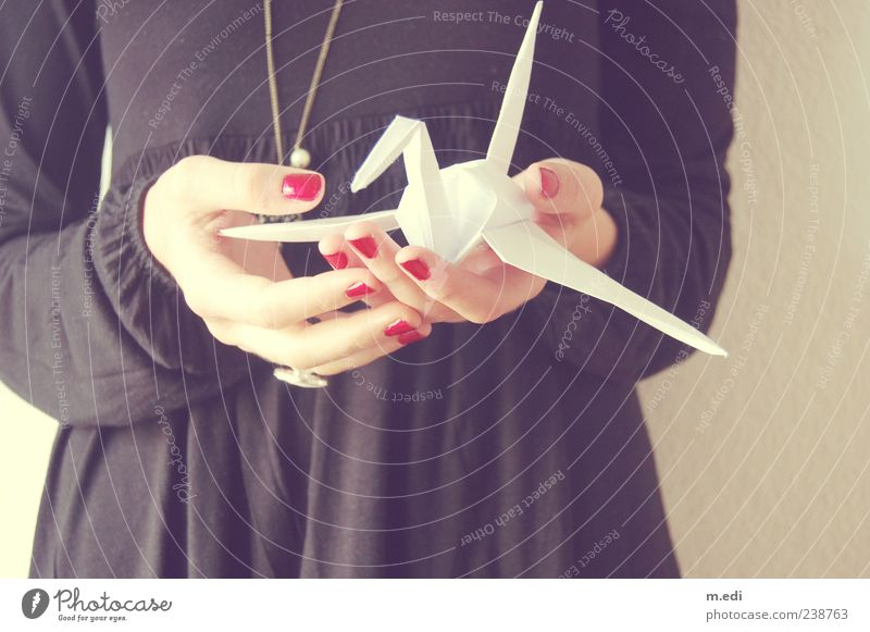 fragile bird (2) Young woman Youth (Young adults) Hand Fingers 1 Human being 18 - 30 years Adults Dress Paper Origami Black White Colour photo Interior shot Day
