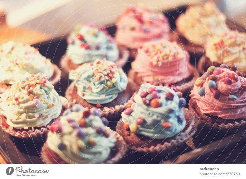 Blue Green Red Yellow Nutrition Pink Sweet Many Cooking & Baking Violet Candy Delicious Hip & trendy Chocolate Cake Muffin
