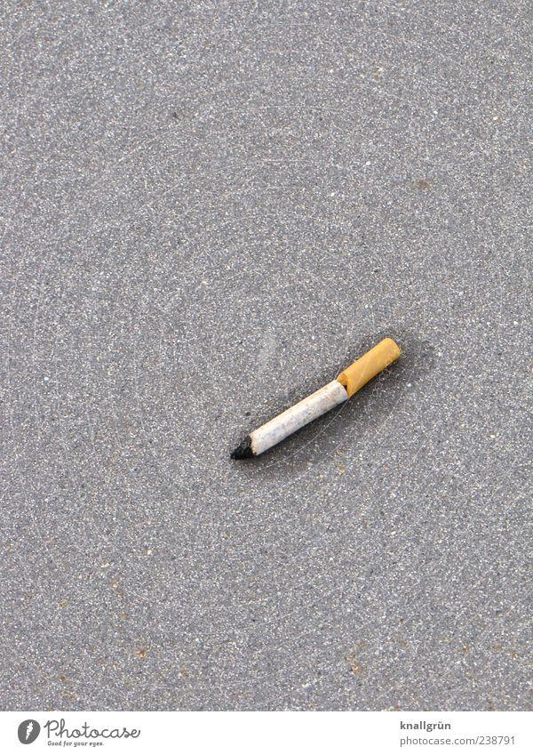 White Emotions Gray Brown Lie Wet Broken Round Smoking Asphalt Cigarette Disgust Addiction Dependence Remorse Judicious