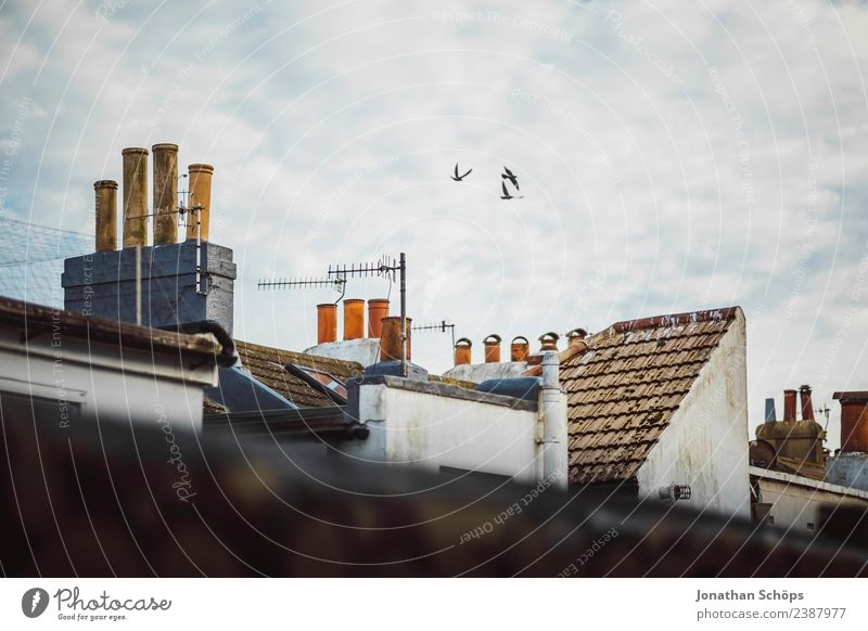 above the roofs III Sky Clouds Brighton Great Britain Europe Small Town Port City House (Residential Structure) Building Architecture Facade Roof Chimney