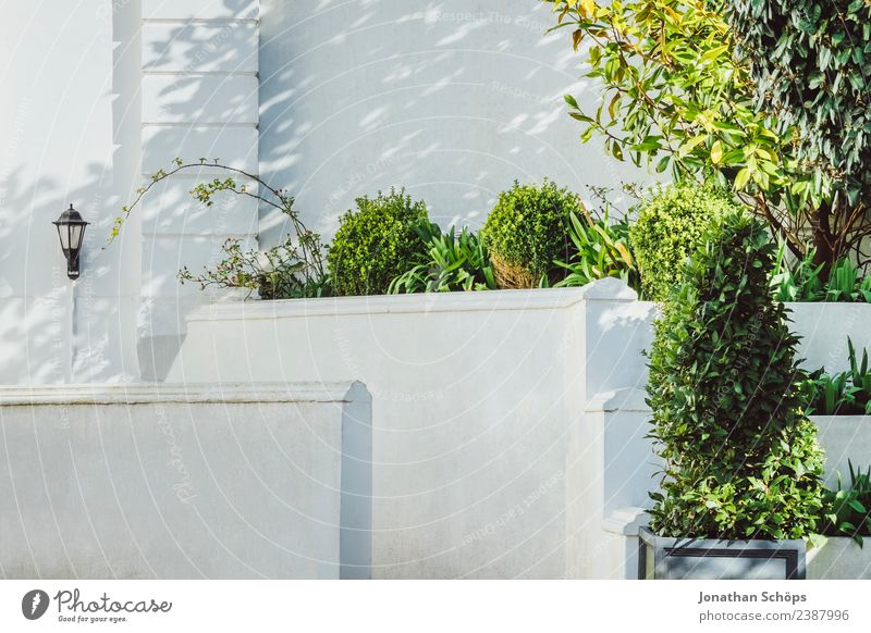 white facade affluent house, Brighton Town House (Residential Structure) Detached house Dream house Building Architecture Facade Terrace Contentment Hedge Green
