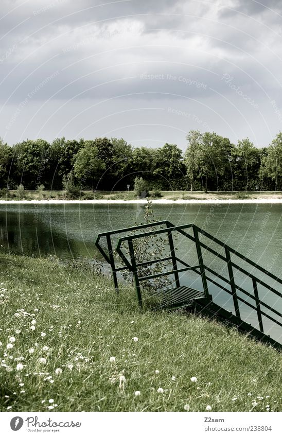 Nature Green Loneliness Calm Environment Landscape Meadow Lake Moody Climate Natural Free Idyll Simple Lakeside Banister