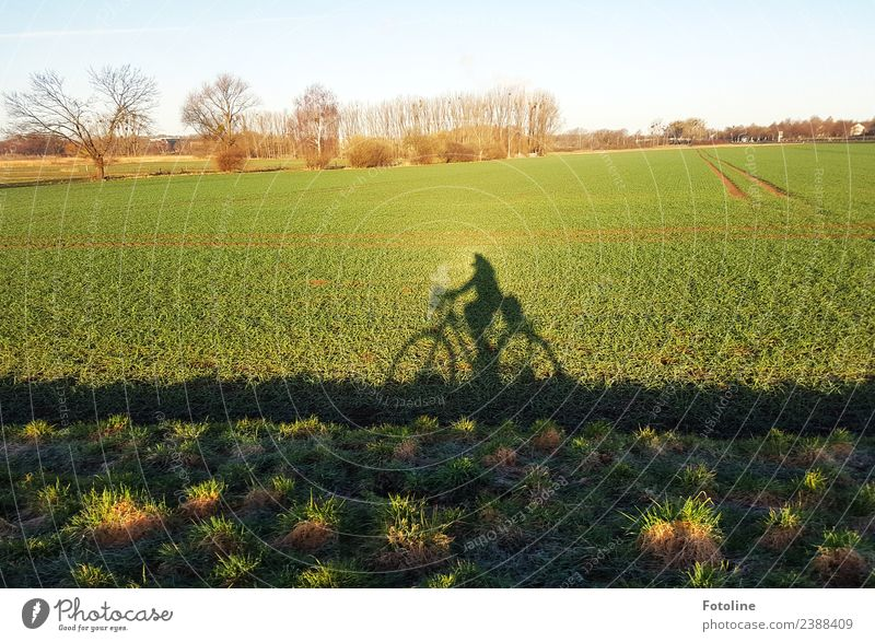Bicycle season in progress Environment Nature Landscape Plant Sky Cloudless sky Spring Tree Grass Bushes Meadow Field Bright Natural Blue Brown Green Black
