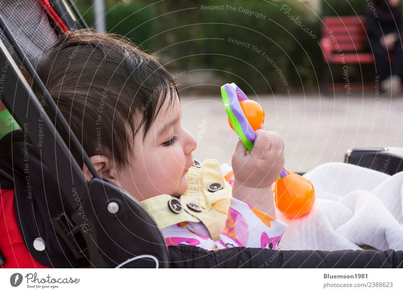 Beautiful baby playing with her toys at carriage Child Human being Nature Flower Red Relaxation Life Spring Emotions Park Transport Infancy Sit To enjoy Baby