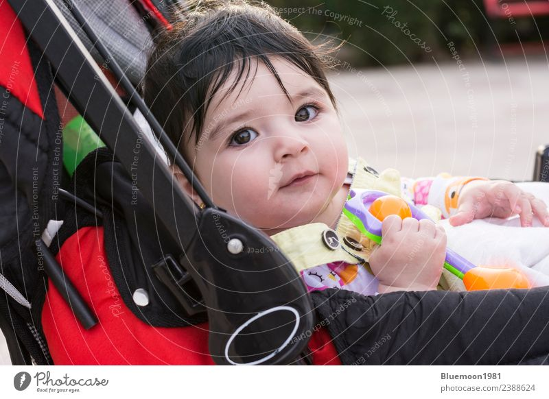Beautiful baby playing with her toys at carriage at park Child Human being Nature Flower Red Relaxation Life Spring Emotions Park Transport Infancy Sit To enjoy