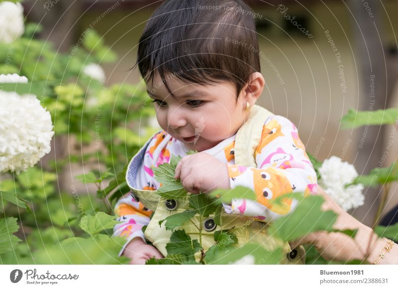 Little baby girl in colorful cloth inside spring flowers at park Child Human being Nature Plant Beautiful Green White Flower Relaxation Leaf Joy Face Life