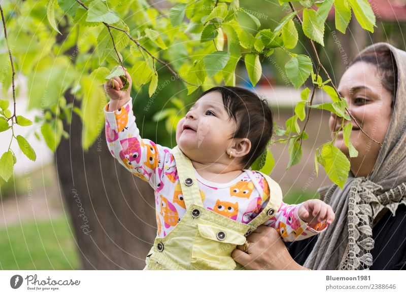 Little baby is touching fresh spring leaves in her mother's hug Woman Child Human being Nature Youth (Young adults) Young woman Plant Colour Beautiful Green