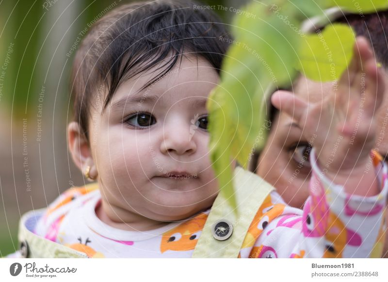Little baby is touching new spring leaves in her mother's hug Woman Child Human being Nature Plant Colour Beautiful Green Hand Leaf Face Adults Lifestyle