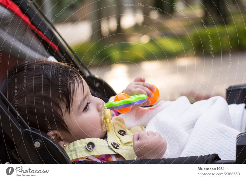 Little baby with yellow dummy at mouth resting at baby carriage Child Human being Nature Youth (Young adults) Town Colour Beautiful Green White Tree Red