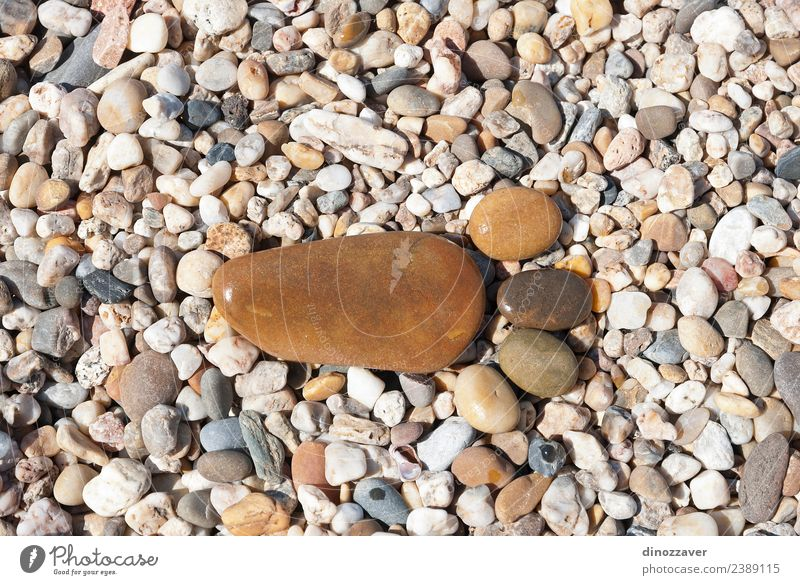 Stones in the shape of footprint Design Joy Vacation & Travel Beach Human being Feet Nature Sand Rock Paw Rust Footprint Together Natural Brown Yellow Black