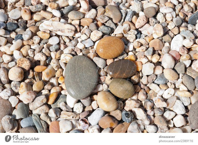 Stones in shape of footprint Human being Nature Vacation & Travel Joy Beach Black Yellow Natural Feet Brown Together Copy Space Sand Rock Design