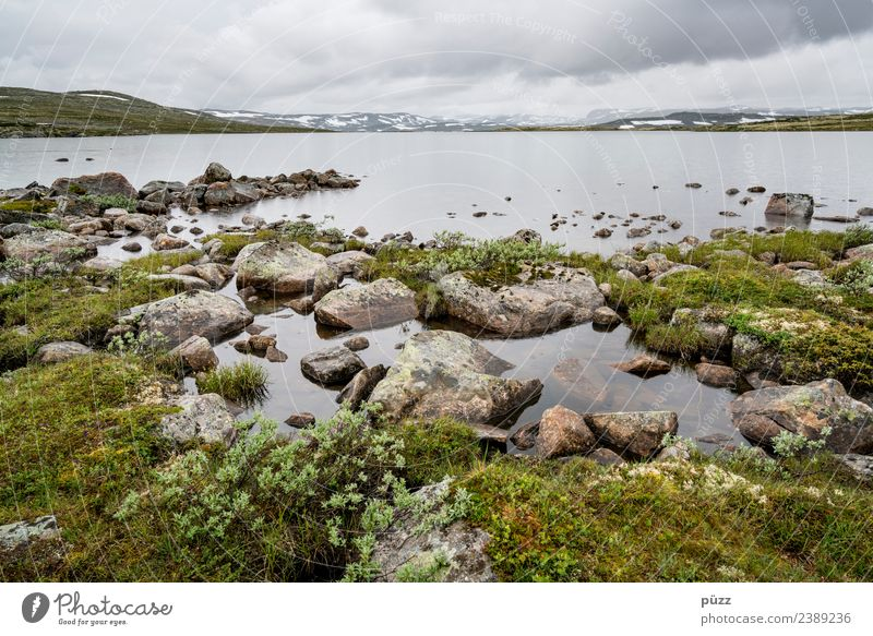 Norway Fishing (Angle) Vacation & Travel Tourism Trip Adventure Far-off places Freedom Hiking Environment Nature Landscape Plant Elements Water Sky Clouds