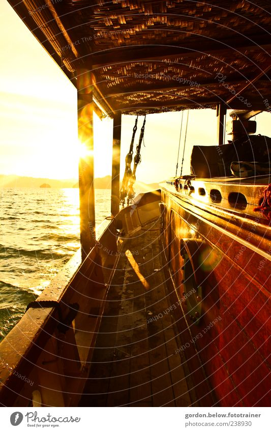 sundown Vacation & Travel Far-off places Freedom Cruise Summer Summer vacation Sun Ocean Waves Navigation Boating trip Yacht Sailing ship On board Yellow Gold