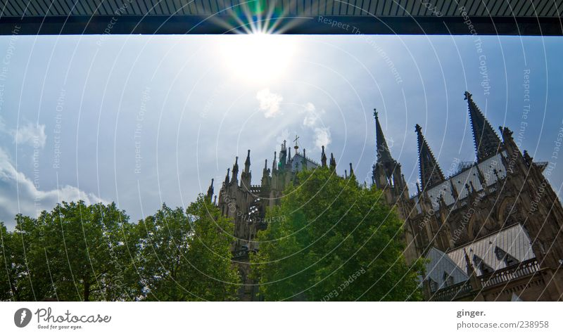 With a view of the cathedral Culture Sky Summer Beautiful weather Cologne Cologne Cathedral Downtown Church Dome Tower Manmade structures Building Architecture