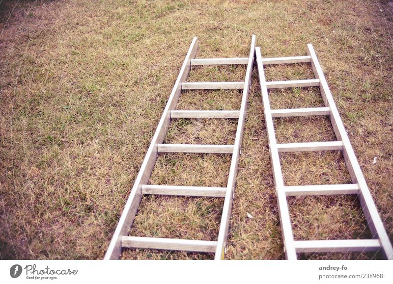 Meadow Grass Brown Earth Lie Beginning Ground Tool Ladder Copy Space Build Redecorate 2 Aluminium