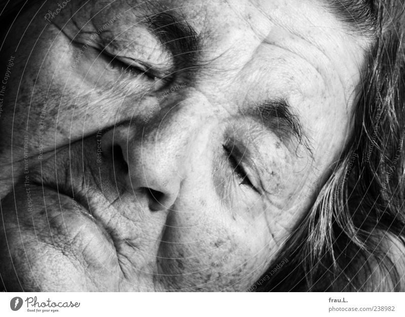 Human being Woman Old Beautiful Calm Adults Face Feminine Senior citizen Emotions Sleep Transience Wrinkle 60 years and older Past Fatigue