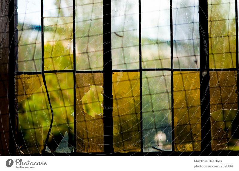 Old Green Yellow Window Architecture Sadness Glass Gold Esthetic Broken Gloomy Grief Industrial Photography Factory Derelict Creepy