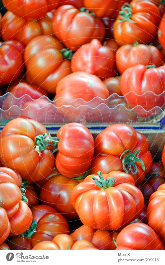 tomatoes Food Vegetable Nutrition Organic produce Vegetarian diet Fresh Delicious Round Juicy Red Tomato Farmer's market Vegetable market Greengrocer