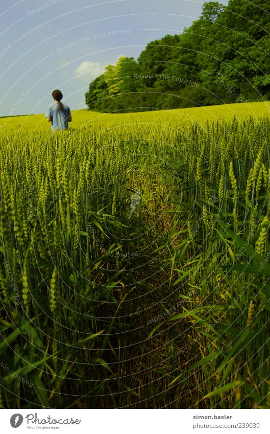 Human being Sky Nature Summer Loneliness Calm Environment Life Field Masculine T-shirt Beautiful weather Individual Long-haired Agricultural crop