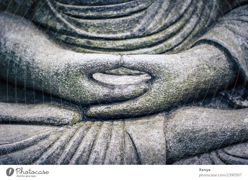 Folded hands Buddha statue Sculpture Stone Gray Serene Calm Belief Lotus Position Prayer Meditation Buddhism Subdued colour Exterior shot Deserted Day