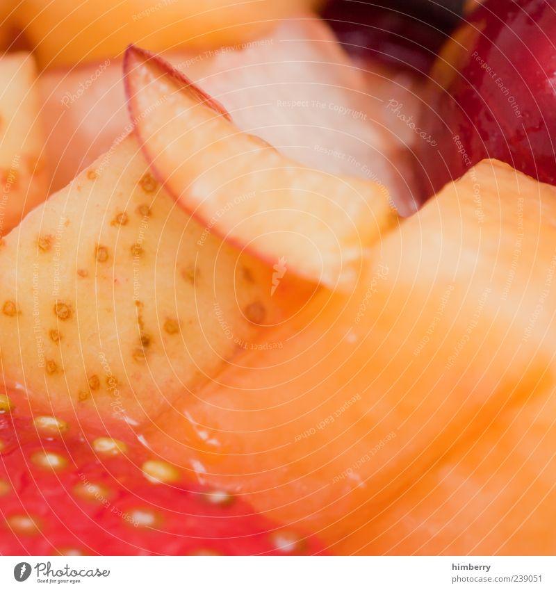 Beautiful Healthy Fruit Orange Glittering Food Multiple Fresh Nutrition Apple Breakfast Delicious Organic produce Strawberry Lettuce Salad